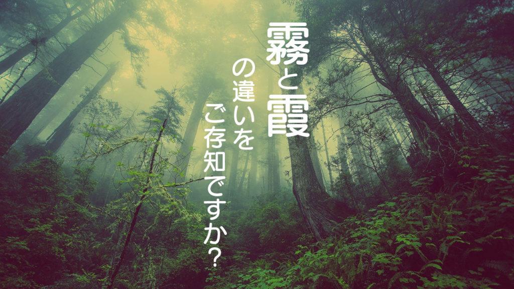「霧」と「霞」の違いをご存知ですか!?