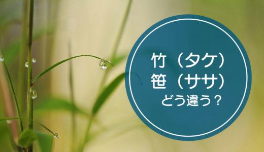 「竹(タケ)」と「笹(ササ)」の違いをご存知ですか!?