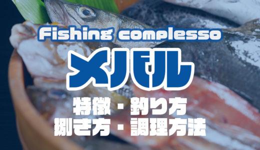 メバルって何!?特徴・釣り方・捌き方・調理方法とことん解説!
