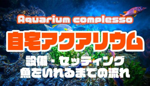 海水アクアリウムをできるだけ低予算ではじめる方法|自宅で90cm水槽を使った迫力の自分水族館