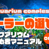 クーラーの選び方|アクアリウムを始めるための初心者マニュアルvol.004