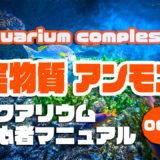 魚や水草にとってよくないアンモニアについて|アクアリウムを始めるための初心者マニュアルvol.008