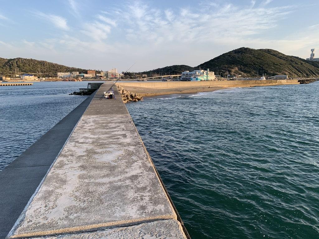 堤防から港側