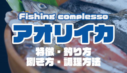 アオリイカって何!?特徴・釣り方・捌き方・調理方法とことん解説!
