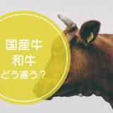「国産牛」と「和牛」の違いをご存知ですか!?