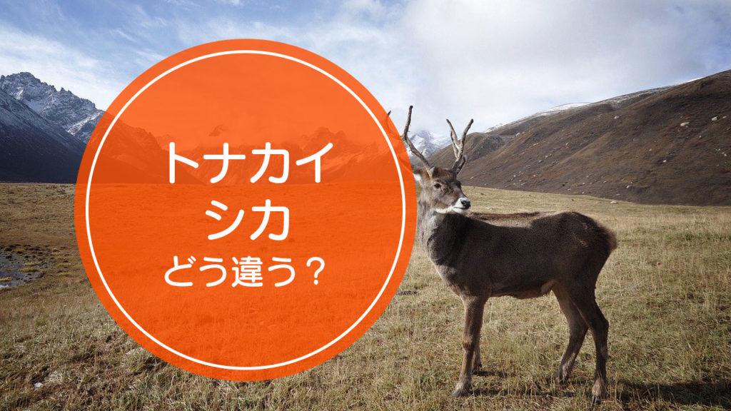 「トナカイ」と「シカ」の違いをご存知ですか!?