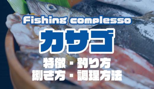カサゴって何!?特徴・釣り方・捌き方・調理方法とことん解説!