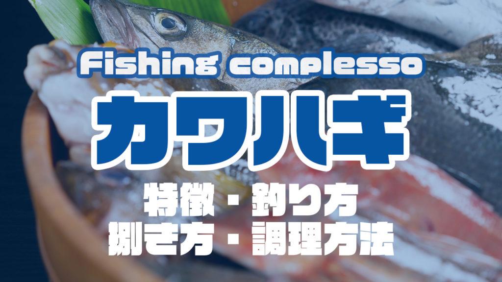 カワハギって何!?特徴・釣り方・捌き方・調理方法とことん解説!