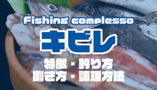 キビレって何!?特徴・釣り方・捌き方・調理方法とことん解説!