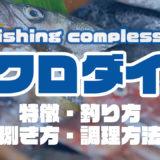 クロダイって何!?特徴・釣り方・捌き方・調理方法とことん解説!