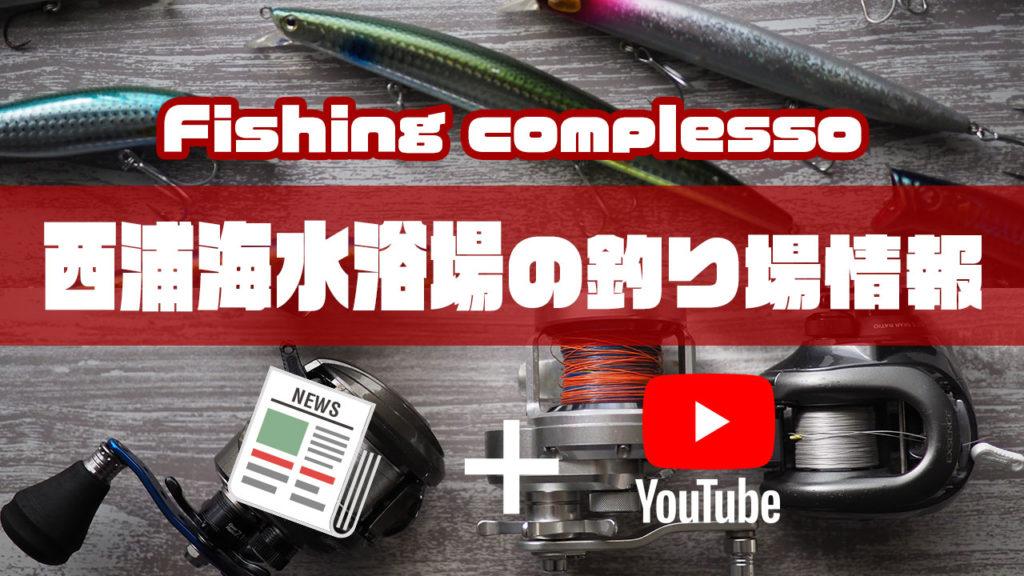 西浦海水浴場の釣り場情報【Fishing complesso 東海の釣り場情報】