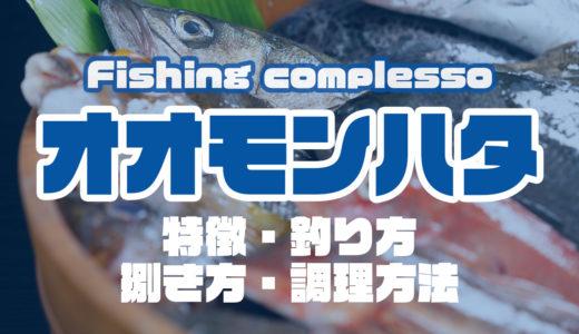 オオモンハタって何!?特徴・釣り方・捌き方・調理方法とことん解説!