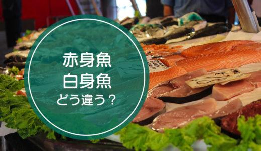 「赤身魚」と「白身魚」の違いをご存知ですか!?