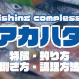アカハタって何!?特徴・釣り方・捌き方・調理方法とことん解説!