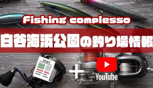 白谷海浜公園の釣り場情報【Fishing complesso 愛知県の釣り場情報】