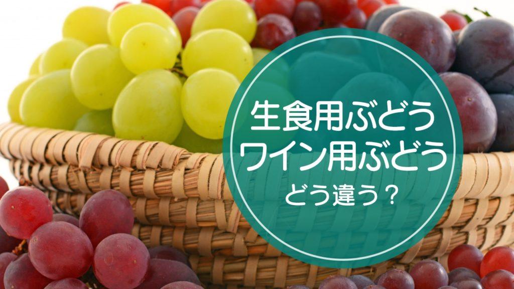 生食用ぶどう・ワイン用ぶどう違い