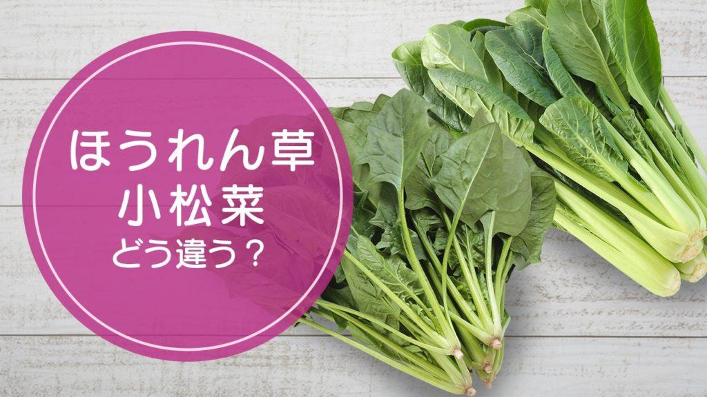 ほうれん草と小松菜違い