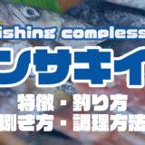 ケンサキイカって何!?特徴・釣り方・捌き方・調理方法とことん解説!