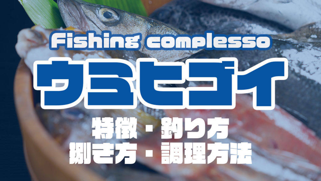 ウミヒゴイって何!?特徴・釣り方・捌き方・調理方法とことん解説!