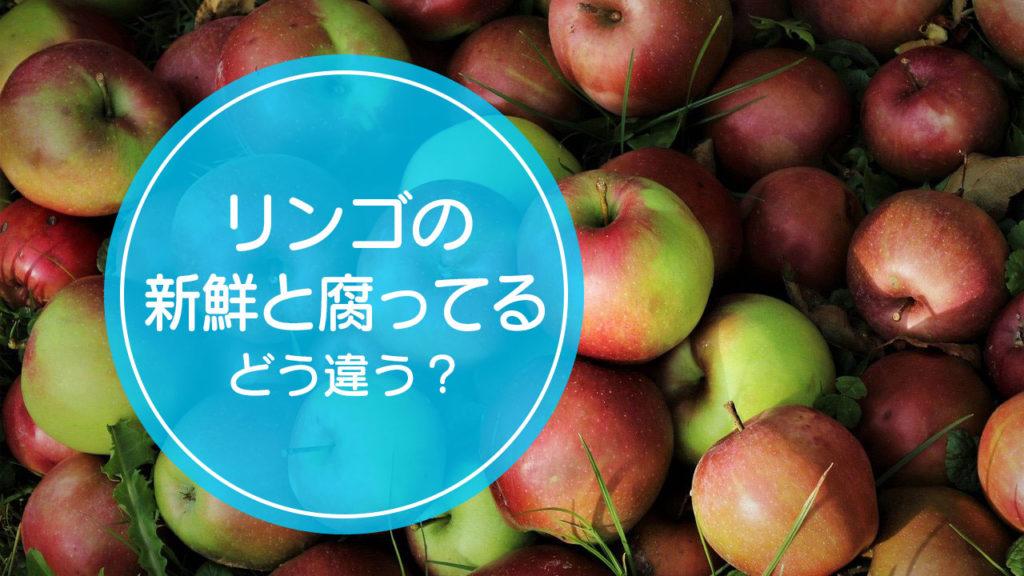 「新鮮なリンゴ」と「腐ってるリンゴ」の違いをご存知ですか!?