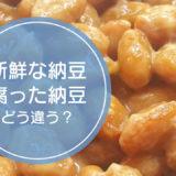 「新鮮な納豆」と「腐った納豆」の違いをご存知ですか!?