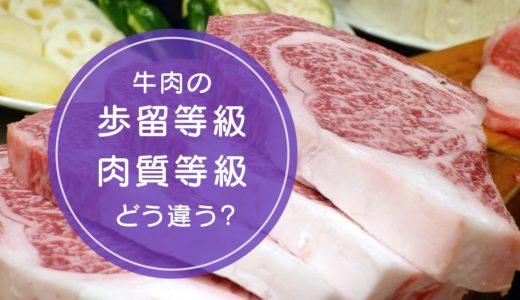 牛肉の「歩留等級」と「肉質等級」の違いをご存知ですか!?