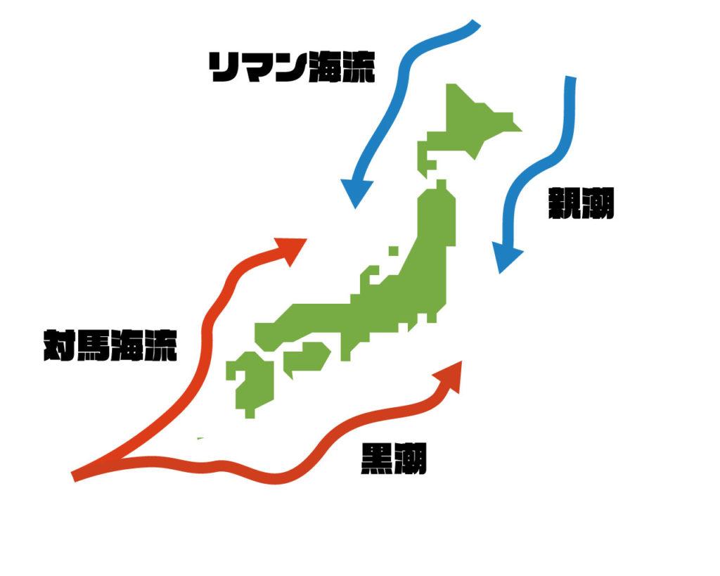 黒潮、親潮って何??|回遊魚を狙うには海流が重要 | complesso.jp