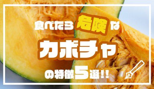 食べたら危険なカボチャの特徴5選!!