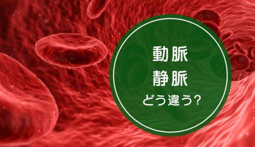 「動脈」と「静脈」の違いをご存知ですか!?