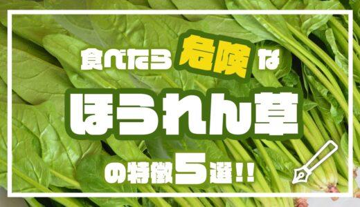 食べたら危険なほうれん草の特徴5選!!